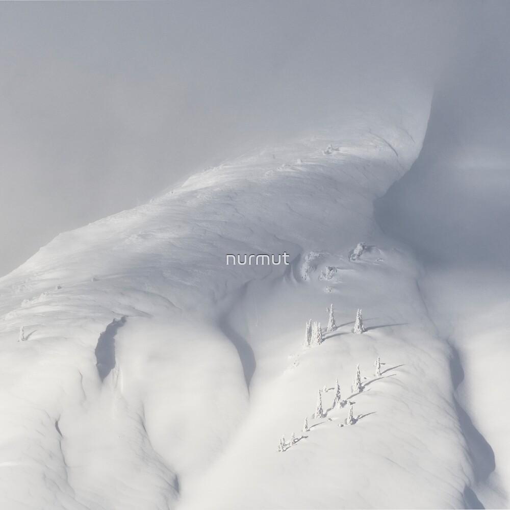Planet Snow 2 von nurmut