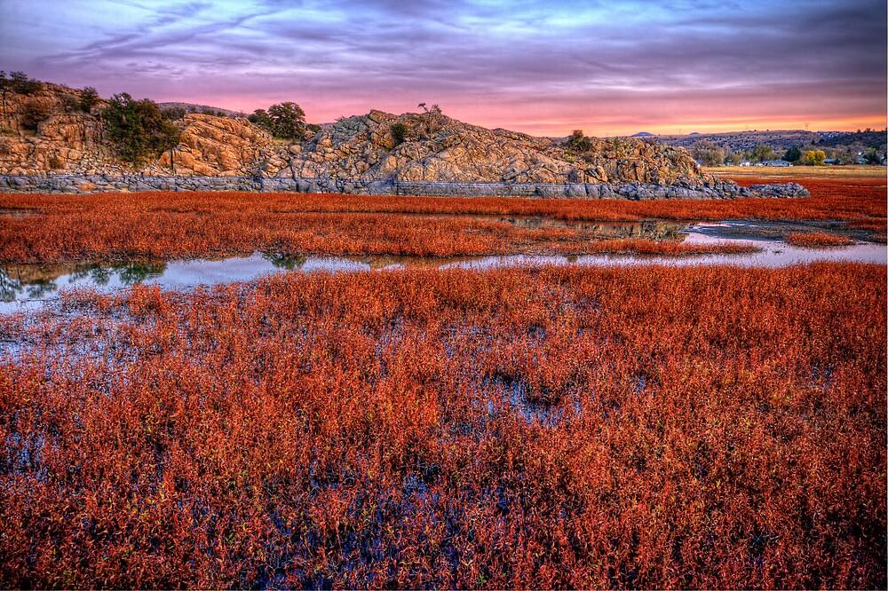 Sea of Red by Bob Larson