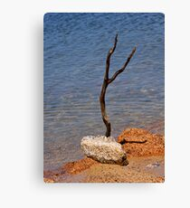 The Art of Survival Canvas Print