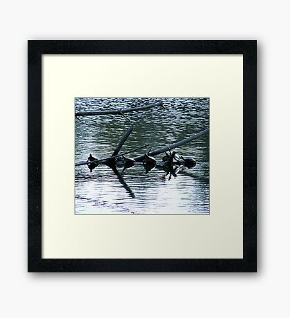 Septuplets At The Day Spa Framed Print