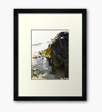 Sea Greenery Framed Print