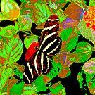 Zebra Wing Butterfly Painted by Rosalie Scanlon