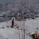 Boedecker Reservoir by Barb Miller