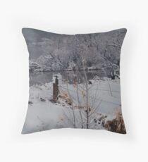 Boedecker Reservoir Throw Pillow