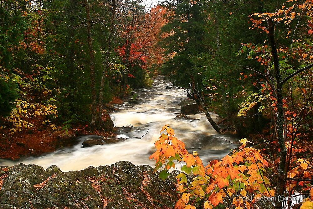Lower reaches of Crystal Creek by Eros Fiacconi (Sooboy)