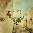 Vintage Grunge Arequipa Street, Peru by DFLC Prints
