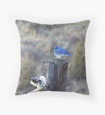 Mountain Bluebird Male Throw Pillow