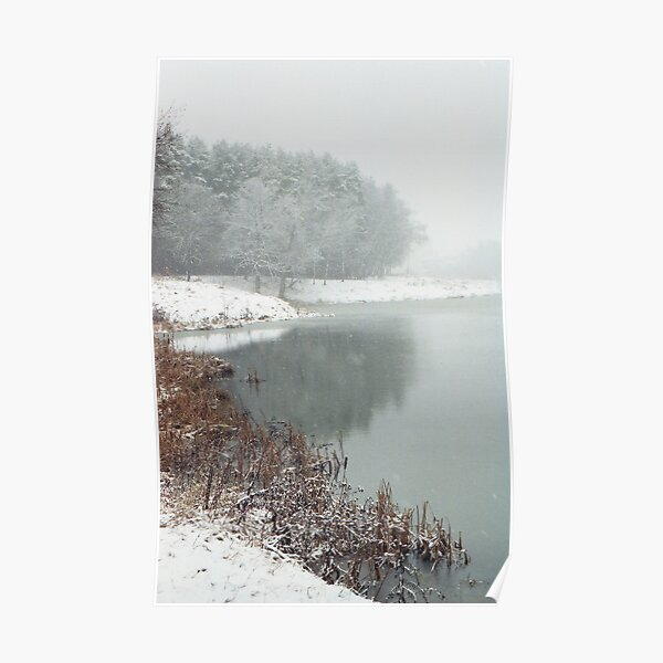 Winter Haiku Poster