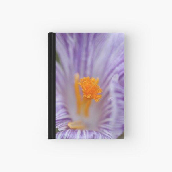 Crocus Close up #2 Hardcover Journal