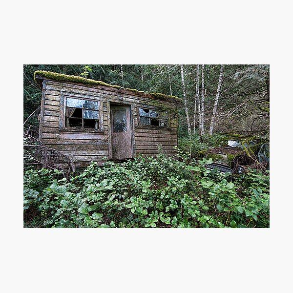 Shack in the Woods Photographic Print