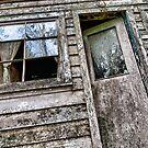 Shack in the Woods, Front Door by toby snelgrove  IPA