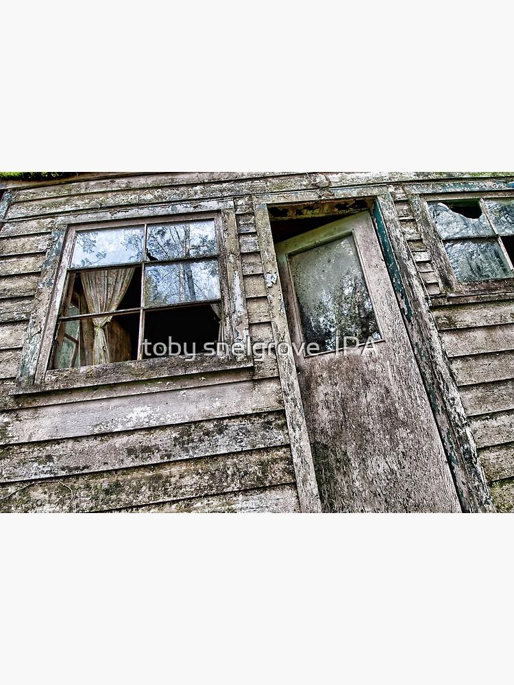 Shack in the Woods, Front Door by tobysnelgrove