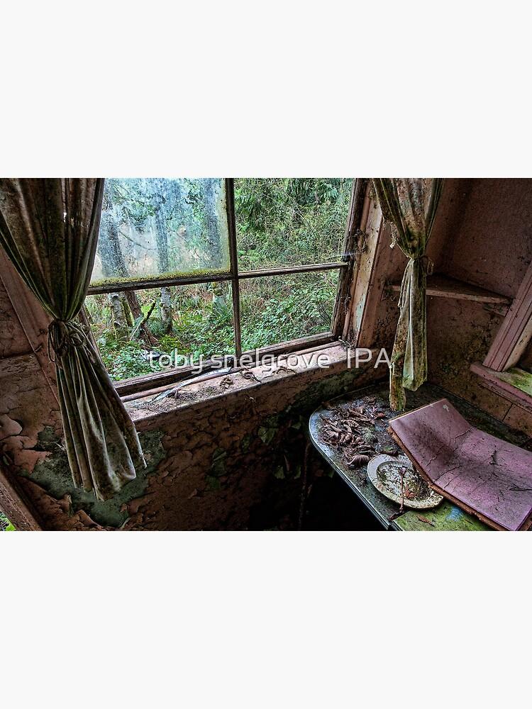 Shack in the Woods, Window by tobysnelgrove