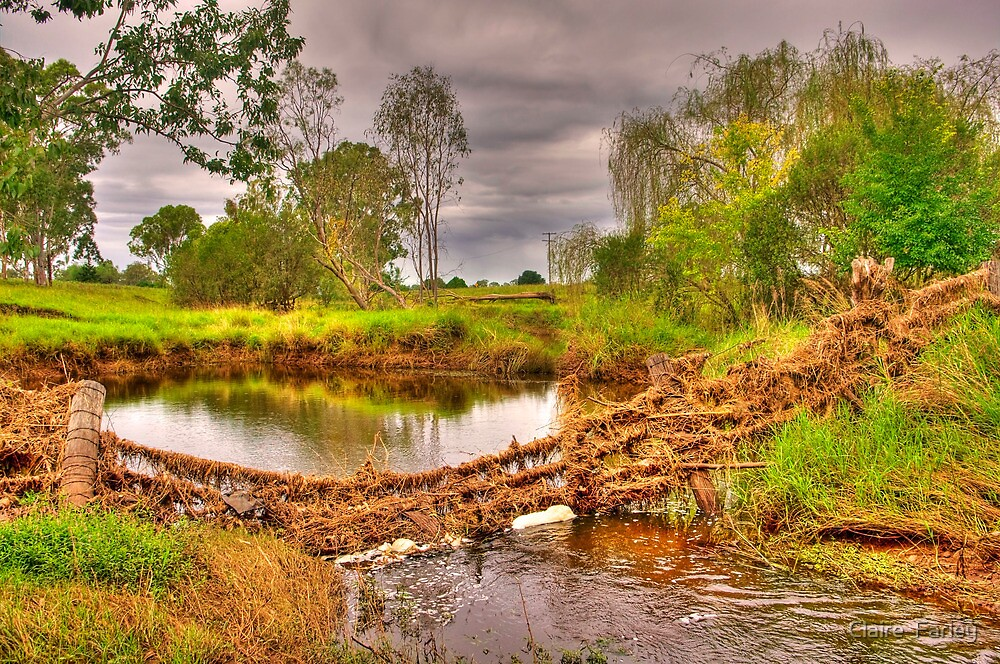 Lions Park, Warrill. Queensland. Australia by Claire  Farley