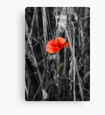 Always Remember Canvas Print