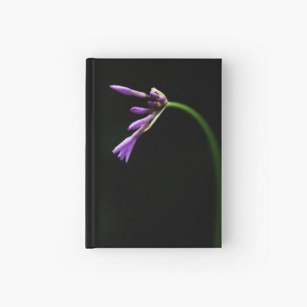 New Hardcover Journal