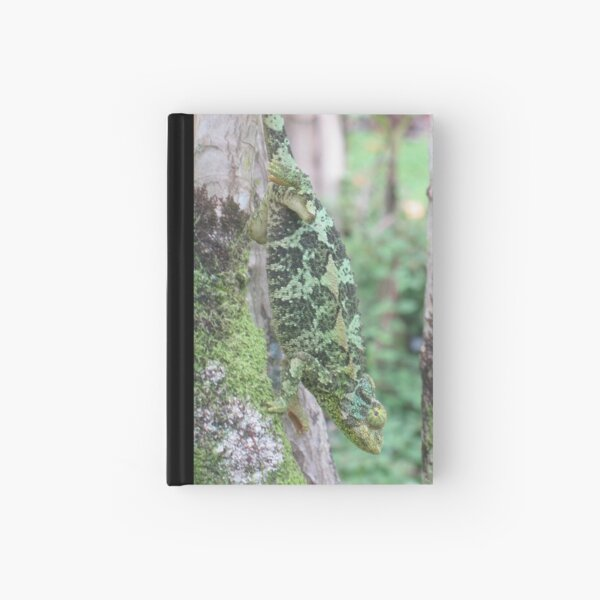 Natural Camouflage: Up Close with Jackson Hardcover Journal