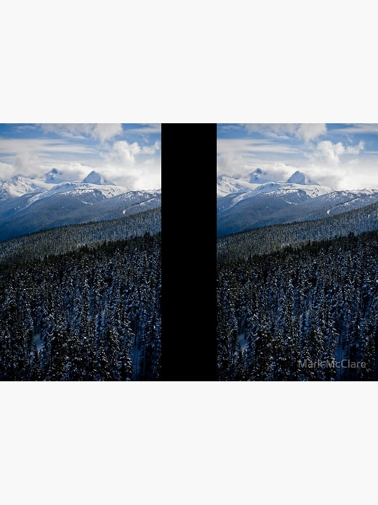 View from Whistler Mountain by mcclare