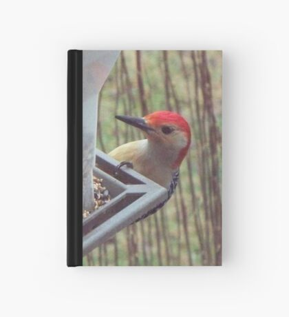 Rudy Red-Bellied Woodpecker Hardcover Journal