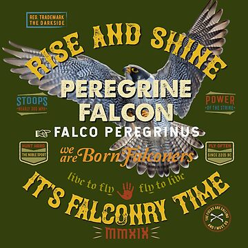 Longwinger Peregrine Falconry Clothing and Falconry Supplies, Clothing and Gifts for Hawkers and Hawkers by manbird