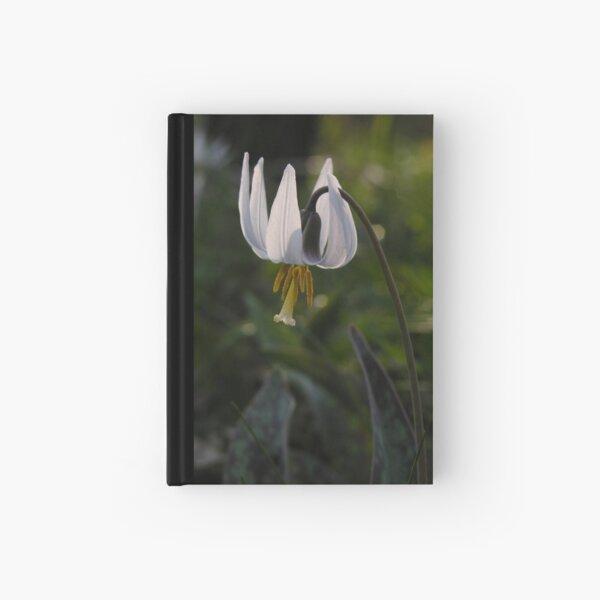 White Trout Lily (Erythronium albidum) Hardcover Journal