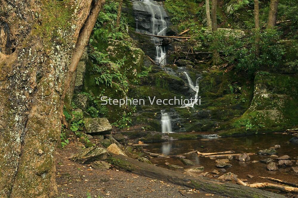 Buttermilk Falls, Tilman Ravine by Stephen Vecchiotti