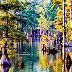 1106 Pine Swamp by WanderingWriter