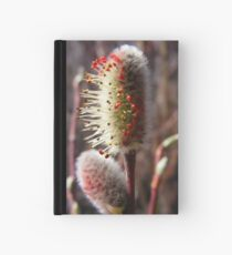 Colors Of Spring Hardcover Journal
