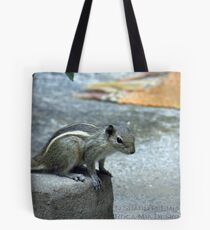 Curiosity - Indian Squirrel Tote Bag
