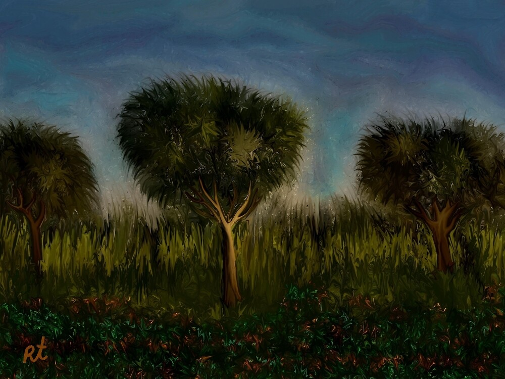 Trees and Landscape by rafi talby by RAFI TALBY