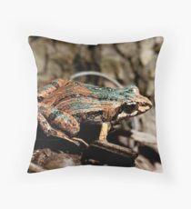 Common Eastern Froglet, Crinia signifera  Throw Pillow