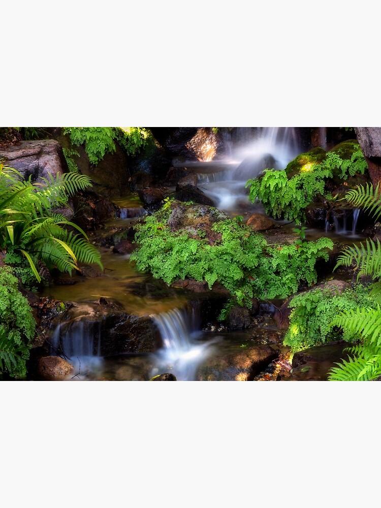 Waterfall at japanese Botanical garden Brisbane by fardad