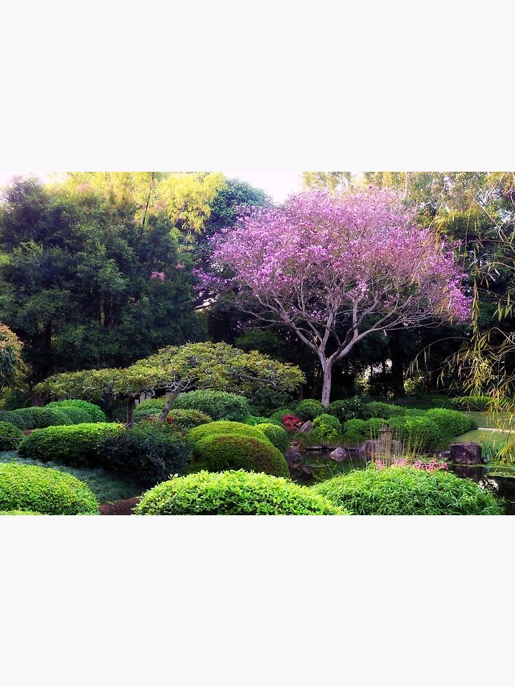 Japanese garden, at Botanical garden Bribane by fardad