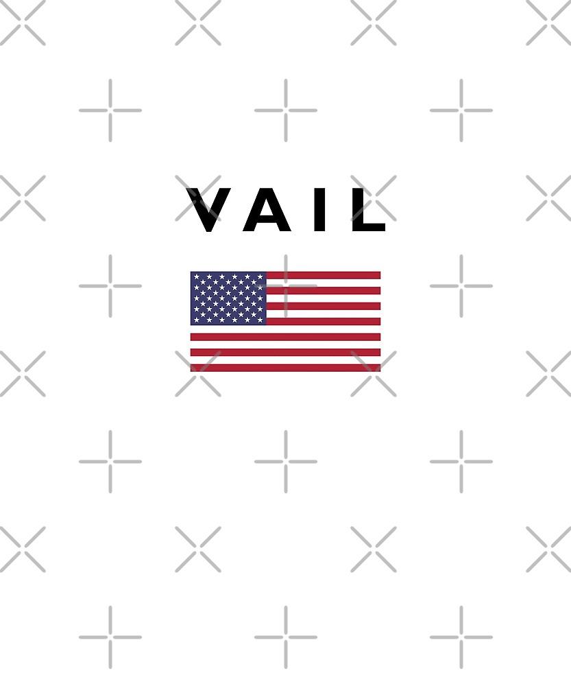 Vail USA American Flag Light-Color by TinyStarAmerica