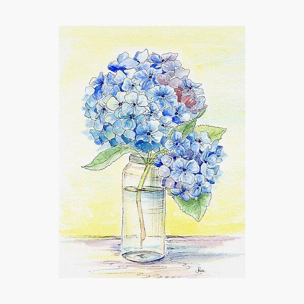 Blue Hydrangea, Still Life Photographic Print