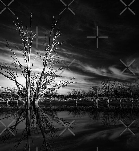 Desolation by *V*  - Globalphotos