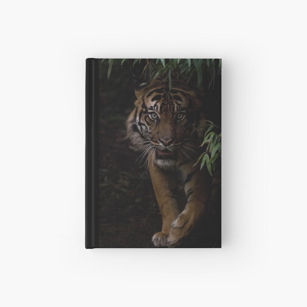 Sumatran Tiger Hardcover Journal