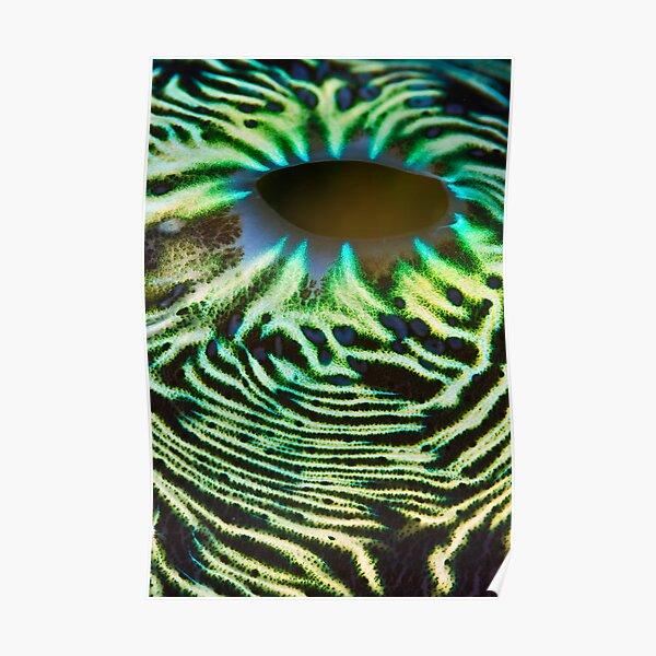 Green lava flow Poster