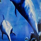 """Dolphins"" Series by Taniakay"