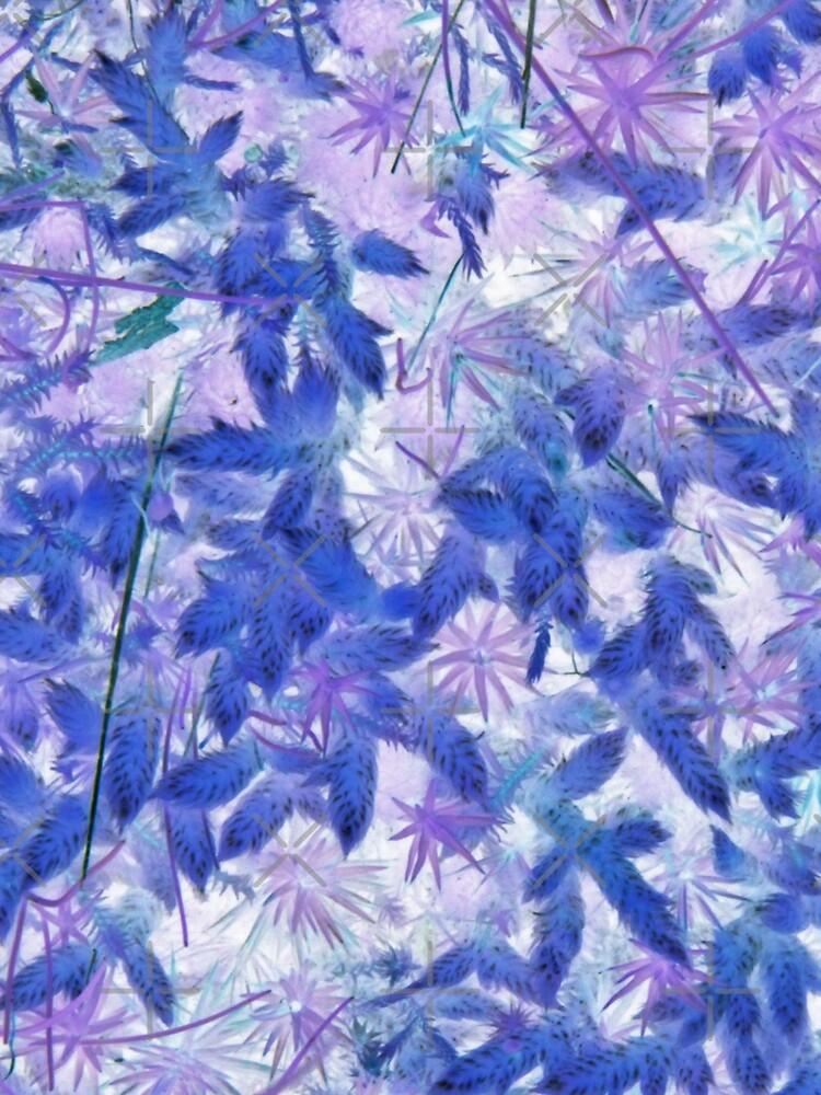 Blue Moss by LisaGHunter
