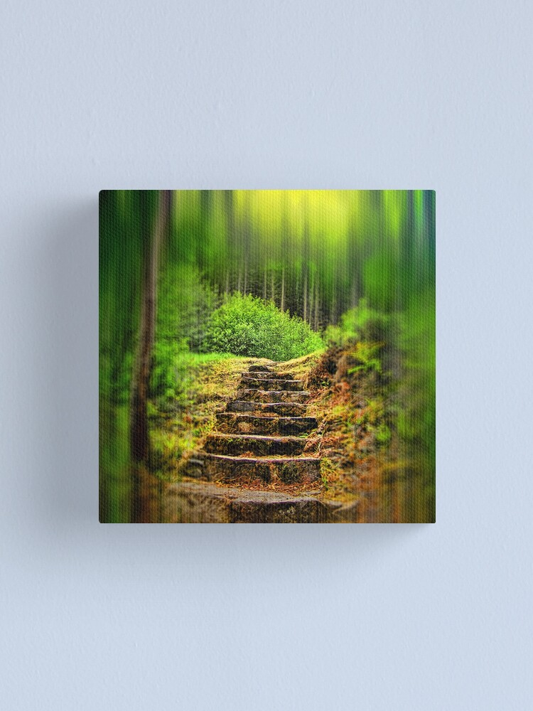 Alternate view of A Path to the Forest Canvas Print