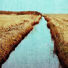 Through the Stream von Daniel Coulmann