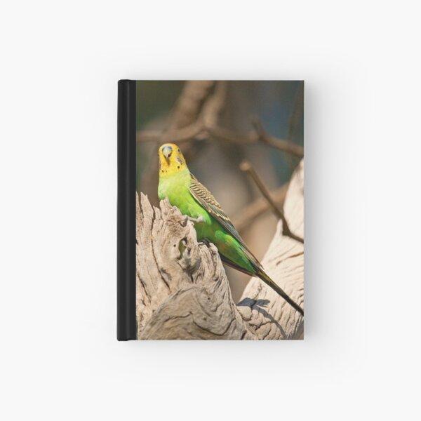 Wild Budgerigar Hardcover Journal