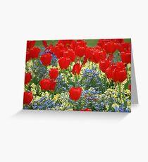 Tulip Mania! Greeting Card