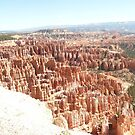 A View of Bryce Canyon Showing Hoodoos. by Mywildscapepics