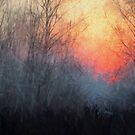 Mystic Morning by linaji