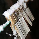 Snowy Pegs  by Darren Glendinning