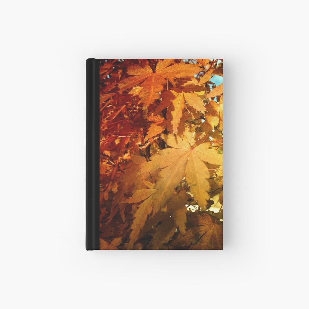 L a s t   S u m m e r Hardcover Journal