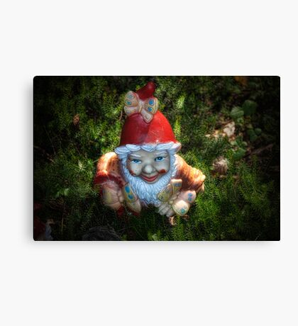 One of these creepy looking garden gnomes Canvas Print
