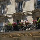 Parisien pretty by BronReid